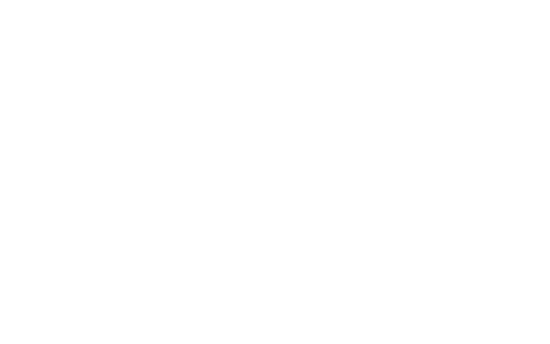 NS Schneider Photography